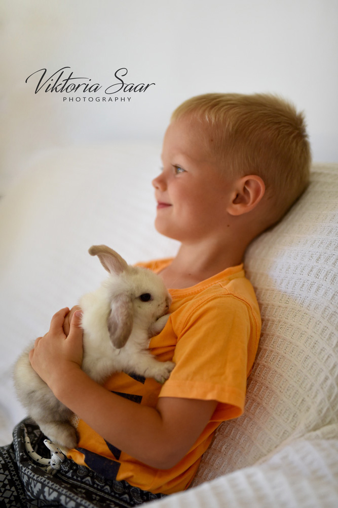 Toddler boy with little bunny